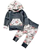 Baby Girls Long Sleeve Flowers Hoodie Top and Pants Outfit with Kangaroo Pocket (18-24 Months, Grey)