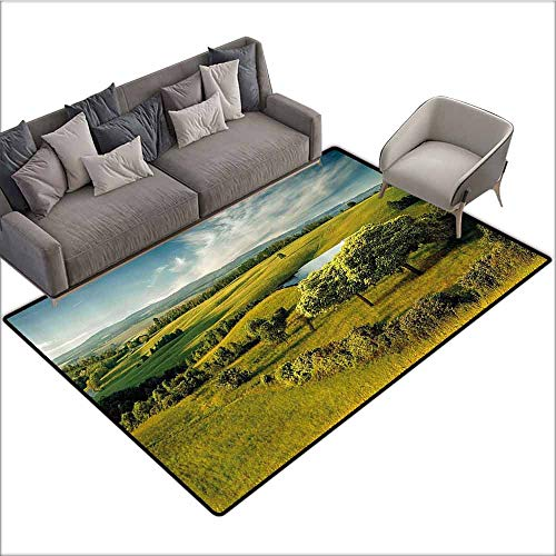 Outdoor Kitchen Room Floor Mat Green,Scenic Scenery Hilly Landscape with Lake and Blue Cloudy Sky Trees Meadow Countryside,Green Blue 60
