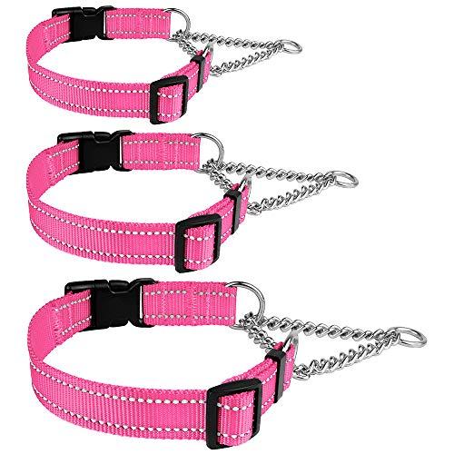 CollarDirect Dog Training Chain Choke Collar