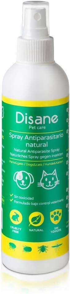 Disane Spray Antiparasitario para Perros y Cachorros Natural | Antipulgas 250ml| Repelente de Insectos: Pulgas, Garrapatas, Piojos y Mosquitos (Leishmania) | Pulverizar Sobre el Perro Antes del Paseo