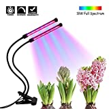 Timing Function Dual Head Grow Light, 36 LEDs 5 Levels 3 Modes Timing(3H/9H/12H) Plant Lights Bulbs with Adjustable 360 Degree Gooseneck for Indoor Plants Hydroponics Greenhouse Garden