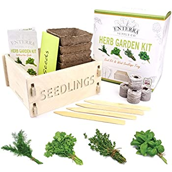 Enterra Supply Herb Garden Seed Starter Kit & Wood Seedlings Planter - Grow Herb Seeds Indoors, a Perfect Garden Gift