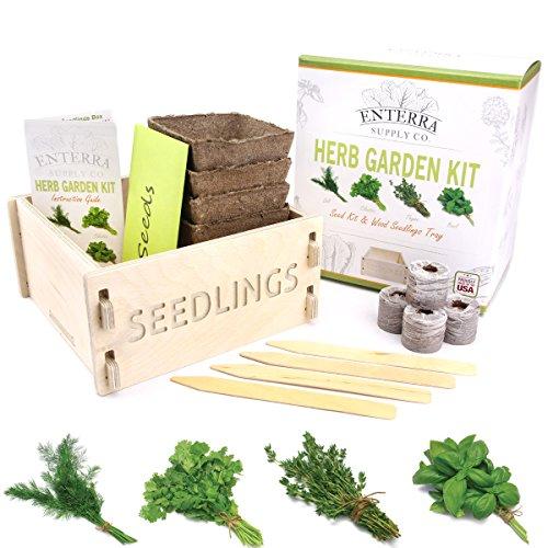 enterra-supply-herb-garden-seed-starter-kit-wood-seedlings-planter-grow-herb-seeds-indoors-a-perfect