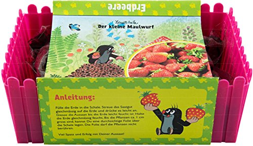 Mein Minigarten Der kleine Maulwurf - Erdbeere Green