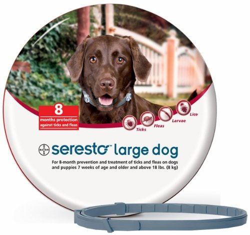 Best Tick Repellent For Large Dogs
