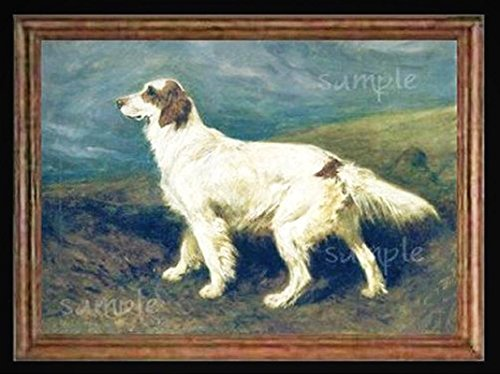 English Setter Dog Miniature Dollhouse Picture - My Mini Garden Dollhouse Accessories for Outdoor or House Decor English Setter Accessories