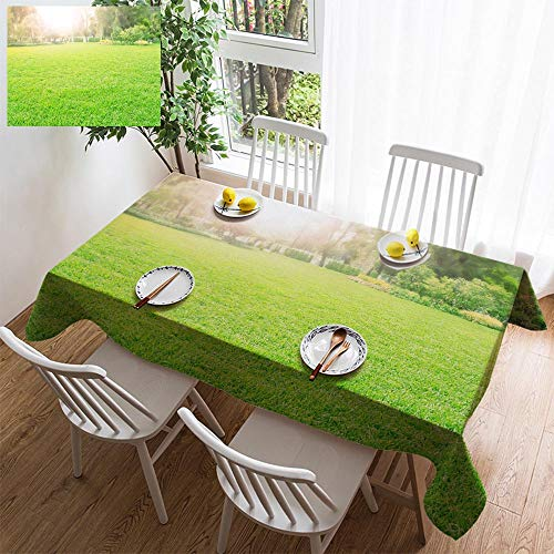 HOOMORE Simple Color Cotton Linen Tablecloth,Washable, Green Grass Meadow in Park Decorating Restaurant - Kitchen School Coffee Shop Rectangular 102×60in (Park Meadows Shops)