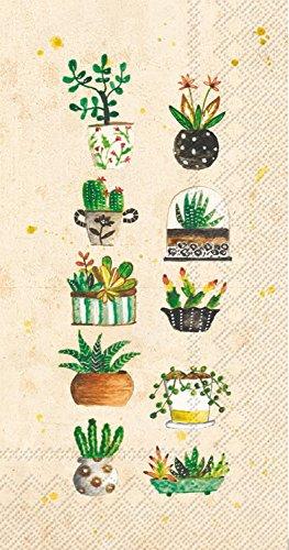 Celebrate the Home Lori Siebert 3-Ply Paper Guest Towels/Banquet Napkins, Succulents, -