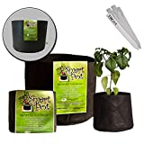 SMART POT GROW DIRT CONTAINER AERATION PLANT BAG [1 2 3 5 GALLON] VARIOUS AMOUNT + THCiTY PLANT STAKES - 2 Gallon / 25 Pot