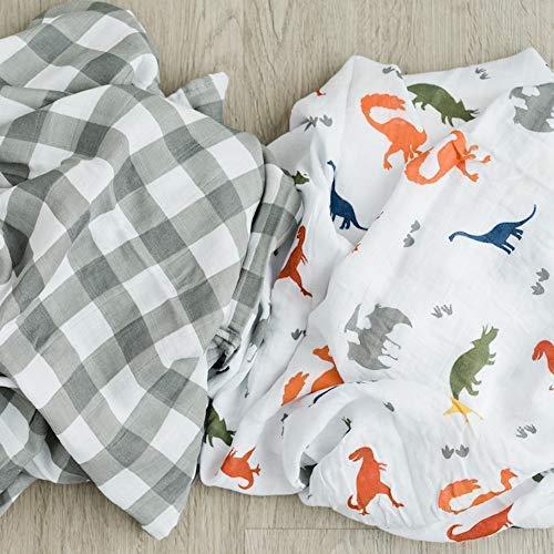 2-Pack Dinosaur Swaddle Blanket Super Soft Luxury Decorative Baby Muslin Swaddle Blankets Wraps (Dinoland)