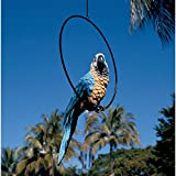 Design Toscano Polly in Paradise Parrot Hanging Bird Ring Perch Statue, Large 21 Inch, Set of Two, Polyresin, Full Color For Sale
