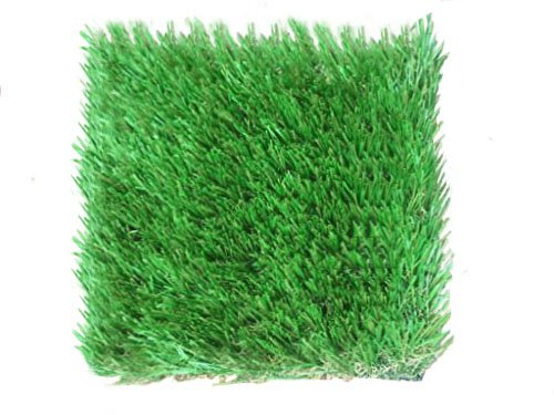 25' Plush (Imperial Plush Artificial Grass - Synthetic Turf Grass for All Seasons - Great for All Areas (25 x 15))
