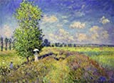 Oil Painting 'The Summer, Poppy Field, 1875 By Claude Monet' 30 x 41 inch / 76 x 104 cm , on High Definition HD canvas prints is for Gifts And Game Room, Home Theater And Nursery Decoration