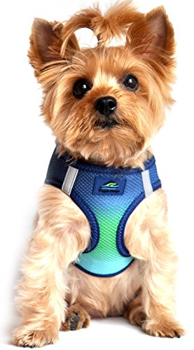ULTRA CHOKE FREE STEP IN REFLECTIVE DOG HARNESS ★ AMERICAN RIVER OMBRE NORTHERN LIGHTS ★ ALL SIZES (Large)