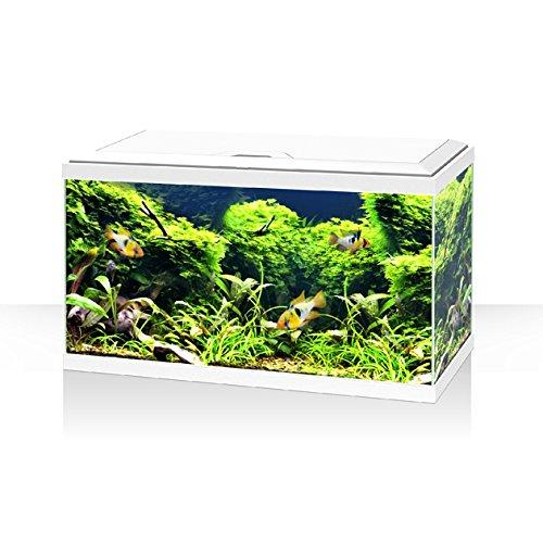 Acquario ambiente aqua 60 LED bianco Askoll