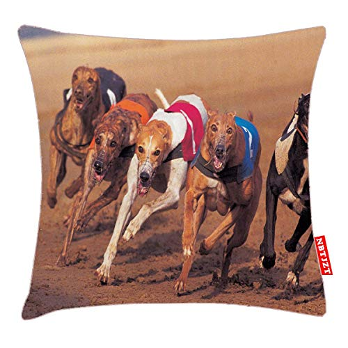 NBTJZT Greyhounds Racing on Track Pillow Cover Standard Throw Pillowcase 18X18 Inch