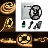 ALED LIGHT 16.4 FT/5M Waterproof Strip 300 Led SMD 5050 Warm White Led Rope Light Set + Control Cable + 12V 6A Power Supply Flexible Led