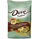 DOVE PROMISES Variety Mix Harvest Halloween Chocolate Candy Pumpkins 24-Ounce Bag
