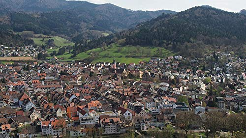 Home Comforts Peel-n-Stick Poster of Waldkirch Bird's Eye View Black Forest Village Vivid Imagery Poster 24 x 16 Adhesive Sticker Poster Print