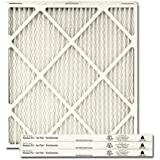 Trane/American Standard PERFECT FIT Air Filter (BAYFTFR24P4)