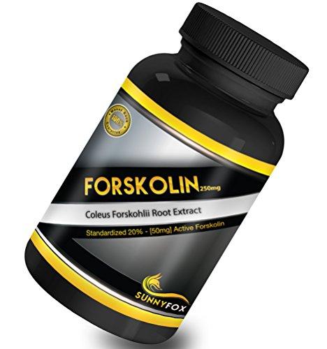 Ensoleillé Fox forskoline Belly Buster - meilleur dosage pour Bodybuilding construire le muscle et brûler les graisses - stimuler la testostérone naturellement chez les hommes - métabolique carburant vasodilatateur renforce les muscles Lean - perte de poi