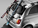 Fiat 500 Window Mount Ski Carrier