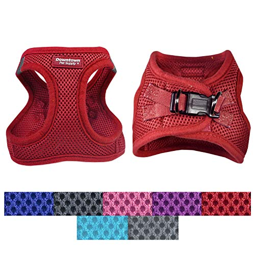 Downtown Pet Supply Best No Pull, Step in Adjustable Dog Harness with Padded Vest, Easy to Put on Small, Medium and Large Dogs (Red, M)