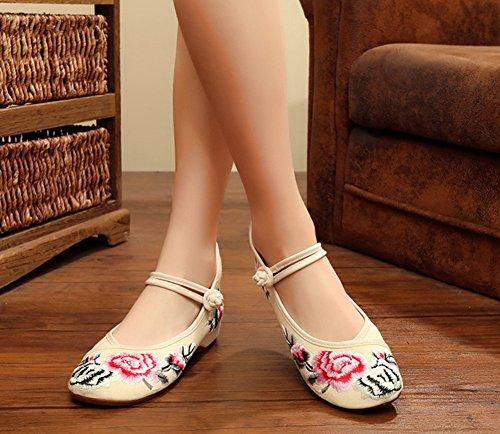 Avacostume Blomst Broderi Womens Ballett Dans Sko Beige