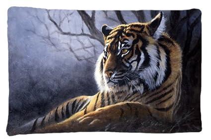 Multicolor Carolines Treasures Zebras in The Field with Baby Fabric Standard Pillowcase BDBA0385PILLOWCASE