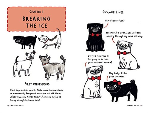 A pugs guide to dating online
