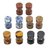 BOPREINA 2-10pcs Gemstone Stud Earring Men Women, 16G Stainless Steel Bars Illusion Tunels 8mm/10mm Look Cheater Fake Ear Plugs Gauges