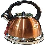 Chaleira De Inox Com Apito Fundo Triplo 3 Litros-DELLA HOME (Bronze)