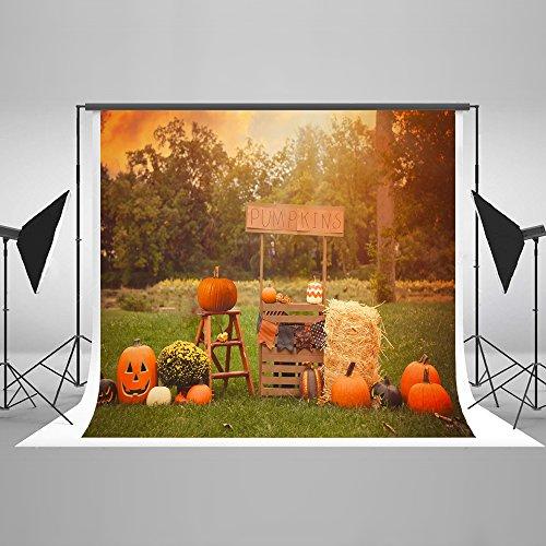 Happy Halloween Party Vintage Backdrops for Photography Collapsible Cotton Nostalgic Home Décor Background Photo Studio Props pour Toussaint 10x10Ft … -