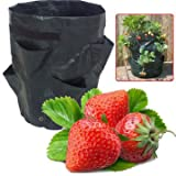 Gardening Garden Pots & Planters - Garden 8 Pockets Strawberry Planter Yard Balcony Vegetable Fruit Herbs Planting Growing Bag - 1 X 8 Pockets Strawberries Grow Bag Product Detail