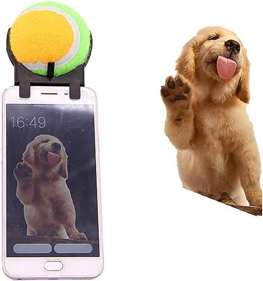 Jnzr Perro Selfie Palo, Accesorio para cámara de Smartphone ...