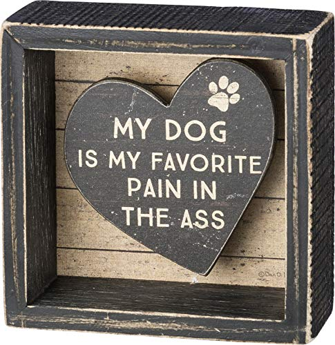 Primitives by Kathy Rustic Reverse Box Sign, 4 x 4-Inches, My Dog is My Favorite