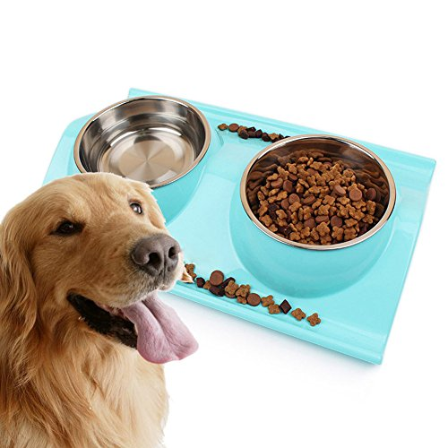 Treat Me Round Stainless Steel Plastic Bottom Pet Food Bowls removable Pet Feeding Double Bowl with ABS Resin Review