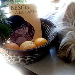 Besos a la carta: (Poesía. Amor, humor y erotismo) eBook: Sanz ...