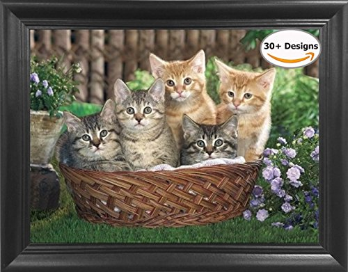 Kittens in Basket Framed 3D lenticular Picture - Unbelievable Life Like 3D Art Pictures, Lenticular Posters, Cool Art Deco, Unique Wall Art Decor, With Dozens to Choose From!