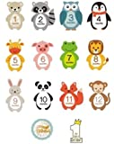 Premium Baby Monthly Milestone Stickers - Set of 14 Photo Sharing Baby Belly Stickers