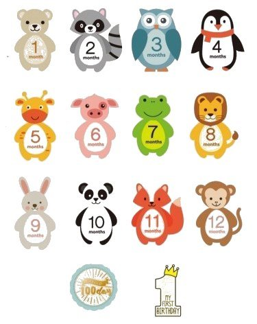 Baby Monthly Milestone Stickers - Set of 14 Photo Sharing Baby Belly Onesie Stickers. Gender Neutral Monthly Stickers for Baby boy or Girl. Create Beautiful Memories with Our Cute Animal Designs.