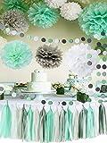 Mint Baby Shower Decorations/Mint Grey White Elephant Baby Shower Supplies Tissue Paper Pom Pom Circle Garland Tassel Garland Mint Bridal Shower Decorations/Mint Grey Birthday Party Decor