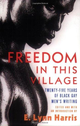 Freedom in This Village: Twenty-Five Years of Black Gay Men's Writing