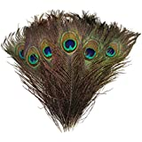 """High Quality Natural Peacock Feathers 10""""-12"""""""