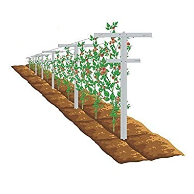 Mr.Garden Raspberry Trellis with Adjustable Arms, Raspberry Stake, Vineyard Trellis,2pack
