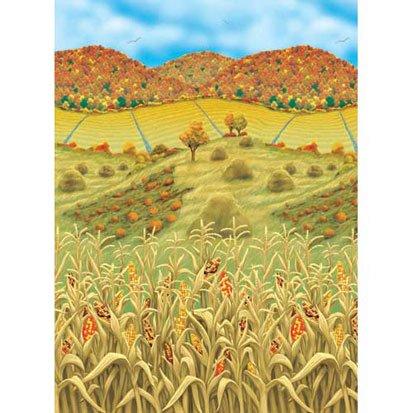 Fall Farmland Room Roll by Party America