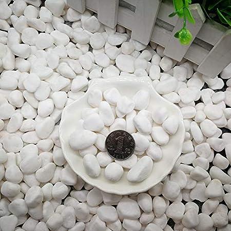 Ruiuzi Pebbles 2 Libras Gravilla Pulida Piedras Naturales pulidas de Colores Mezclados peque/ñas Piedras Decorativas de Roca de r/ío