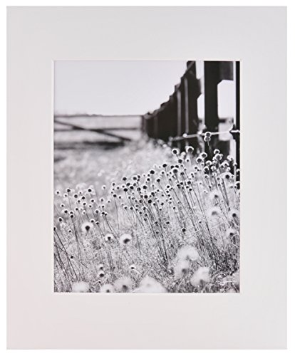 Nielsen Bainbridge Artcare By White 16x20 Pre-Cut Museum Quality Archival Picture Mat For 11x14 ()
