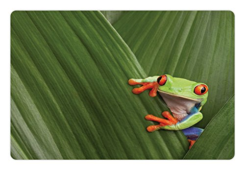 Lunarable Animal Pet Mat for Food and Water, Red Eyed Tree Frog Hiding in Exotic Macro Leaf in Costa Rica Rainforest Tropical Nature, Rectangle Non-Slip Rubber Mat for Dogs and Cats, Green