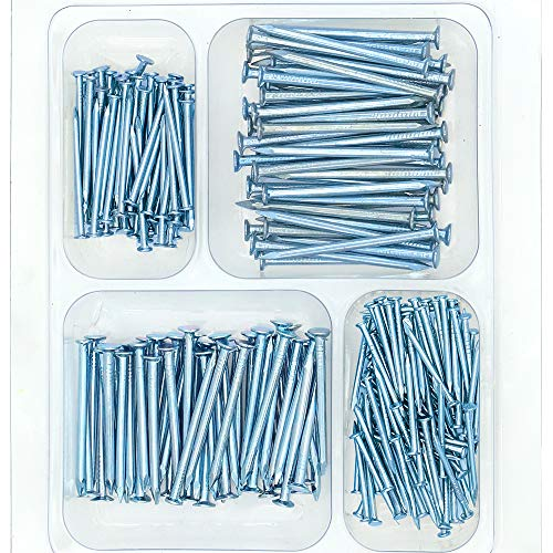 HongWay Hardware Nail Assortment Kit 250pcs, Galvanized Nails, 4 Size Assortment
